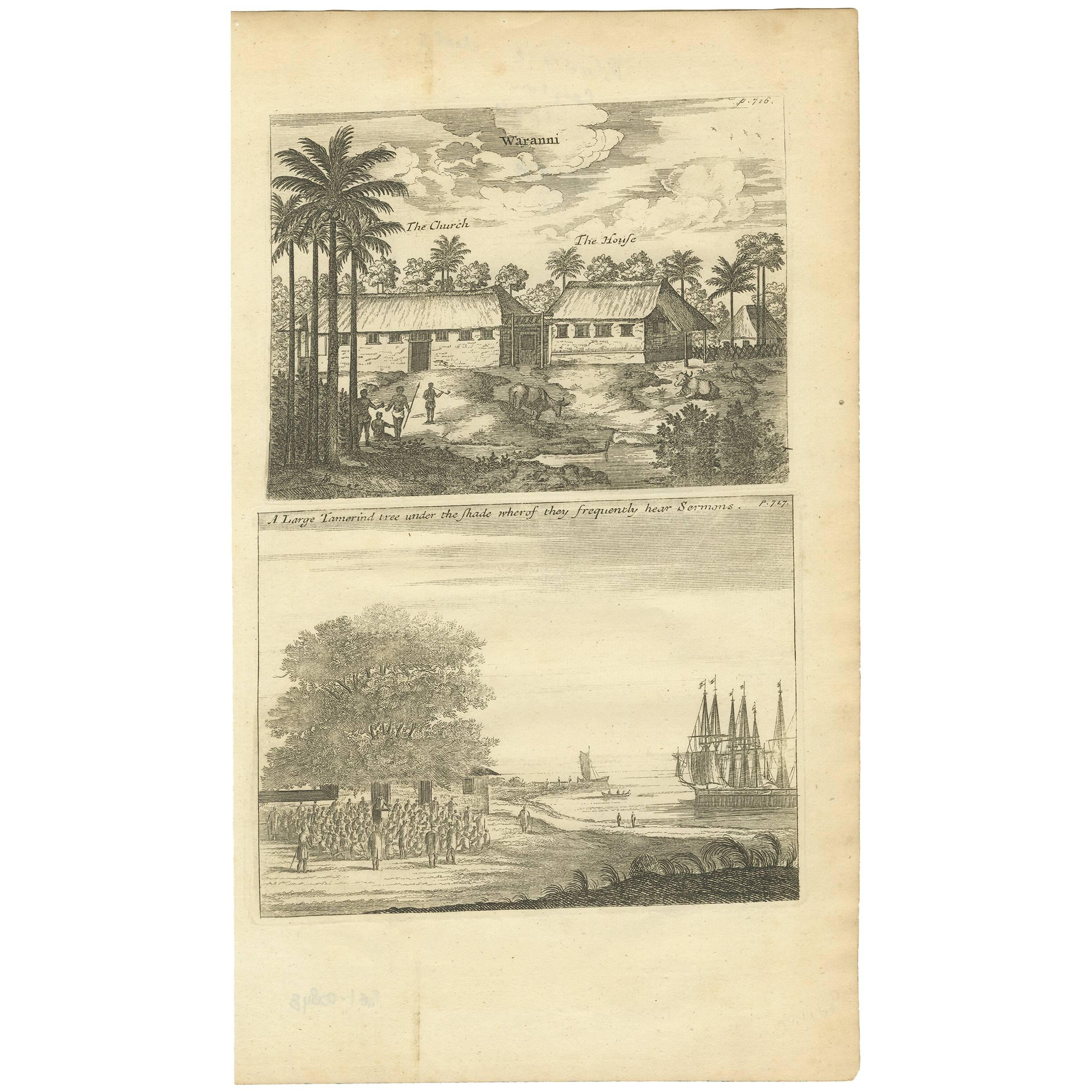 Antique Print of Waranni and a Tamarind Tree 'Ceylon, Sri Lanka'