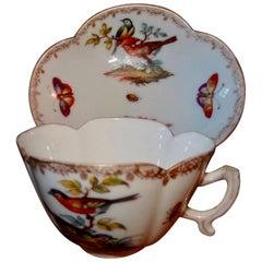 19th Century Meissen Porcelain Augustus Rex Cup and Saucer Butterflies & Birds