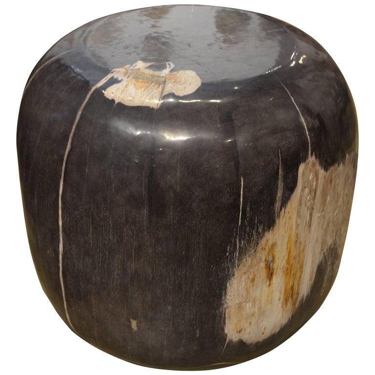Andrianna Shamaris Extra Large Drum Shape Petrified Wood Side Table For Sale