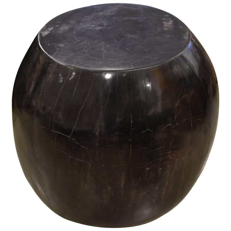 Andrianna Shamaris Super Smooth Drum Shape Petrified Wood Side Table For Sale