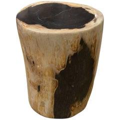Andrianna Shamaris High Quality Petrified Wood Side Table