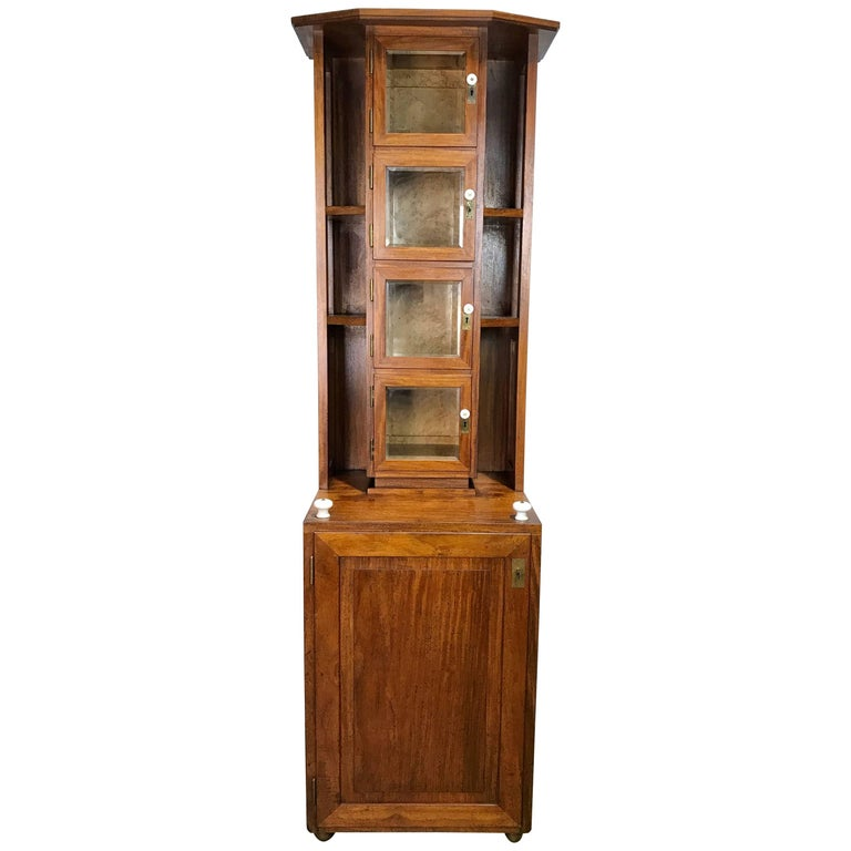 Austrian Secessionist Apothecary Cabinet