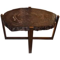 Andrianna Shamaris Petrified Wood Slab Table with Bronze Base