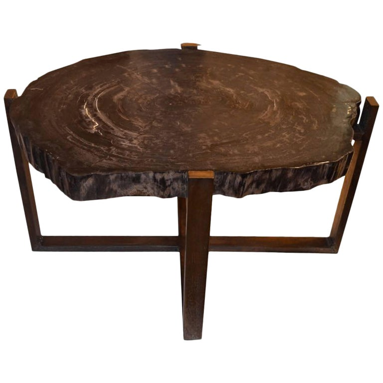 Andrianna Shamaris Petrified Wood Slab Table with Bronze Base For Sale