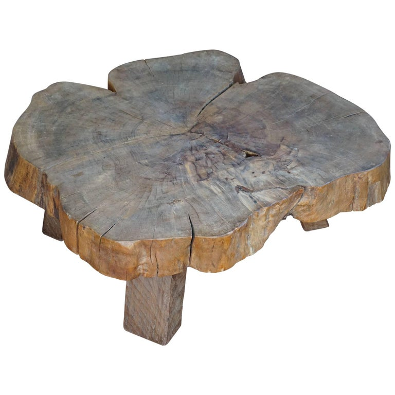 Midcentury, 1960-1970 Organically Stylish Walnut Wooden Tree Trunk Coffee Table