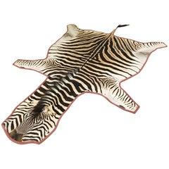 Forsyth Zebra Hide Rug Trimmed in Blush Velvet
