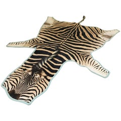 Forsyth Zebra Hide Rug Trimmed in Blue Cotton Linen