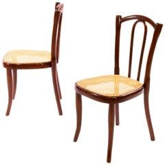 Pair of Thonet Children Bentwood Chairs No. 2 Jugendstil