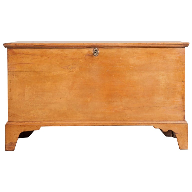 English Early 19th Century Painted Pine Trunk