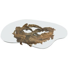 Organic Modern Amoeba Shaped Root Wood and Glass Coffee Table