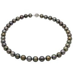 Tahitian Black Pearl Necklace with 14 Karat White Gold Ball Clasp