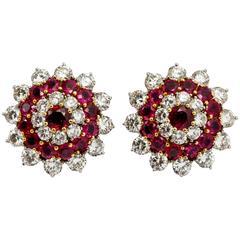 Beautiful Rubies and Diamonds Earrings