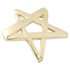 Tiffany & Co Paloma Picasso Large Star Brooch Pendant