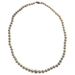 1930s Saltwater Pearl Necklace
