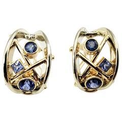 14 Karat White Gold Tanzanite Clip On Earrings