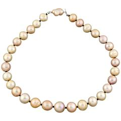 Tahitian Cultured Champagne Tone Pearl Necklace