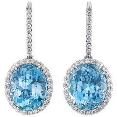 Aquamarine Drop Earrings 9.47 Carats