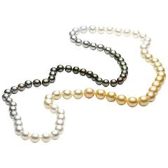 Jesse Tahiti and South Sea Pearl Necklace