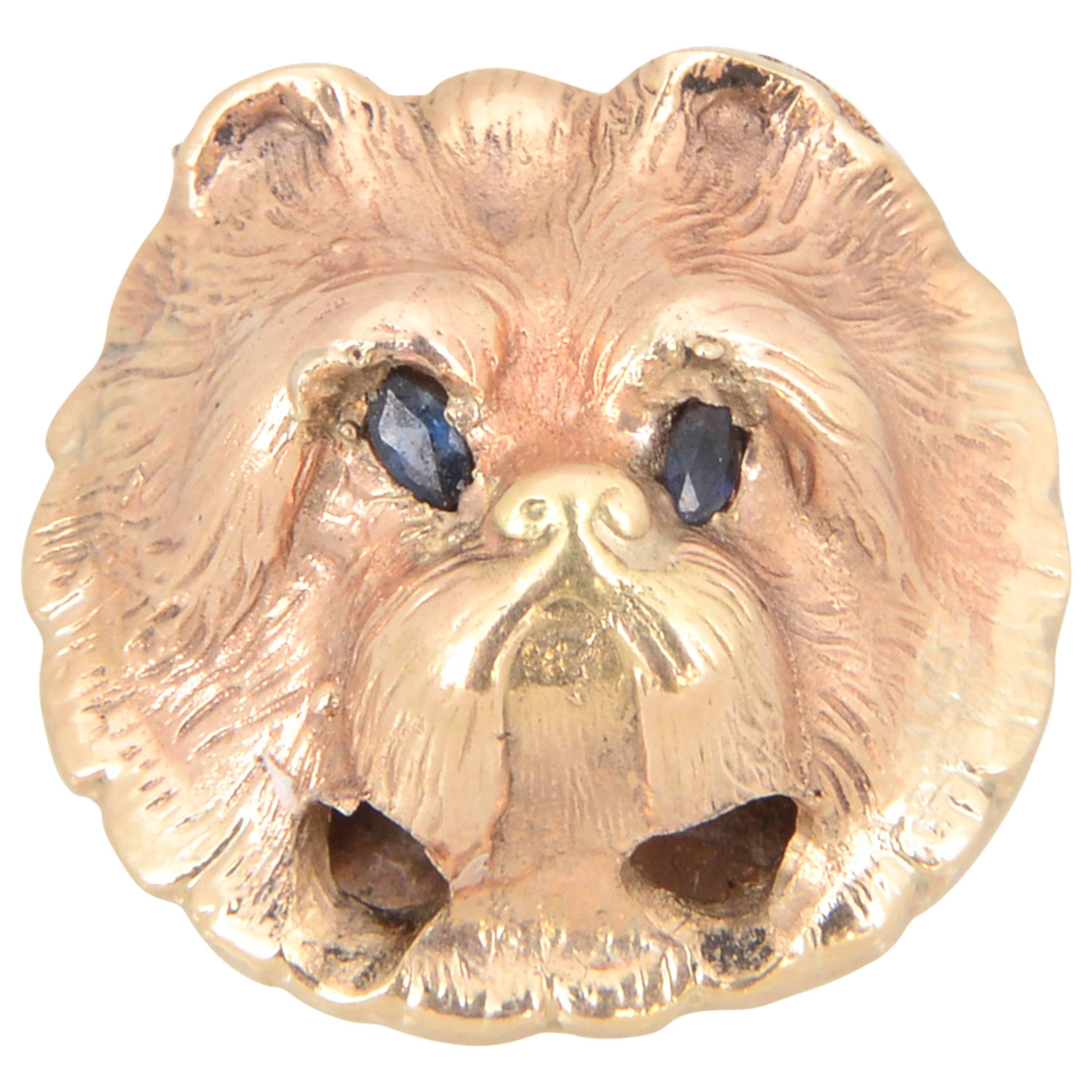 Victorian Sapphire Gold Dog's Head 'Yorkie or Maltese' Slide