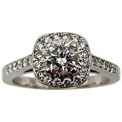 Petite Diamond  Platinum Halo Ring