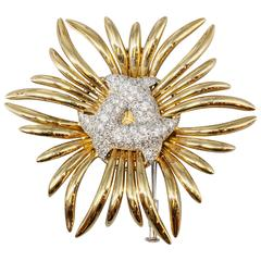 VERDURA Diamond  Gold Ray Brooch