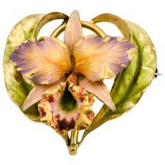 Art Nouveau Enamel Gold Iris Brooch