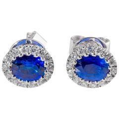 Oval Shaped Sapphire diamond gold cluster Earrings