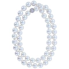 Opera Length South Sea Pearl Necklace