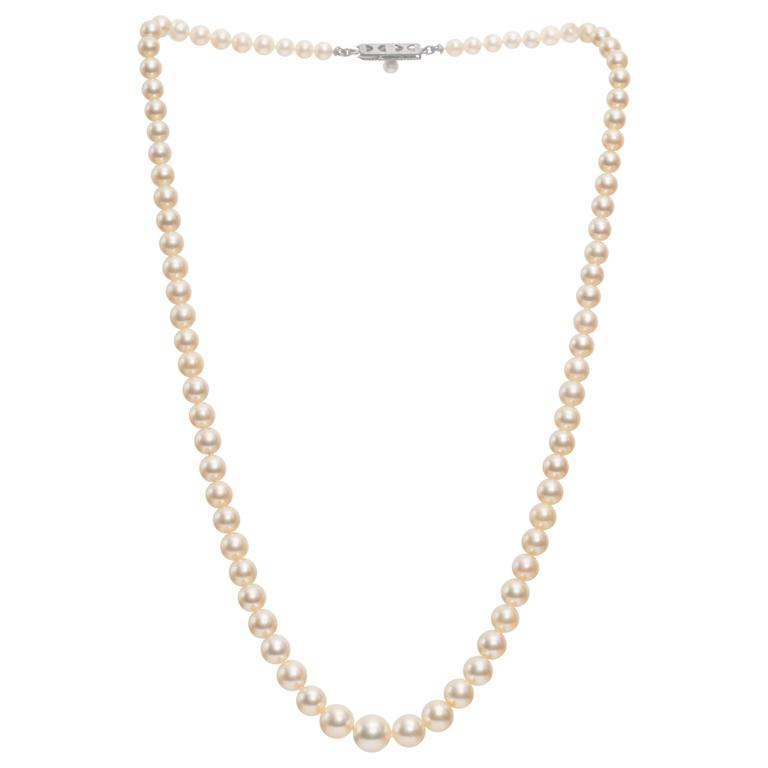 a665d51937ae9 1930s Mikimoto Necklace with Graduating Pearls