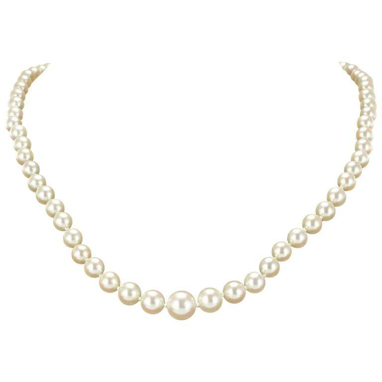 1950s Cultured Round White Pearl Necklace For Sale at 1stdibs e3585268cc
