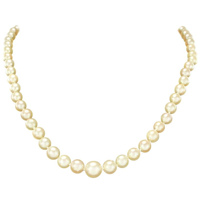 French 1950s Cultured Round White Pearl Necklace 1