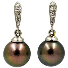 Cultured Black Pearl Drop Earrings
