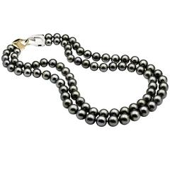 Two-Row Tahitian South Sea Pearl Strand 18 Carat Yellow and White Padlock Clasp