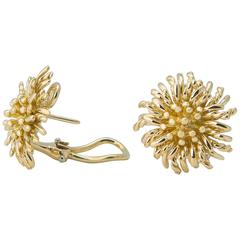 Tiffany & Co. Gold Anemone Earrings
