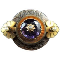 Amethyst 14 Karat Gold Brooch, Napoleon III