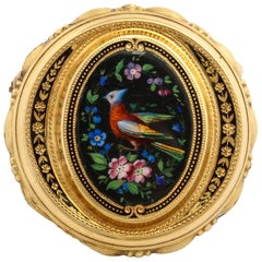 Painted Enamel Bird of Paradise Gold Pin, circa 1870