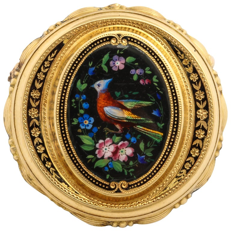 Painted Enamel Bird of Paradise Gold Pin, circa 1870 For Sale