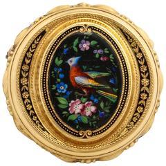 Painted Enamel Bird of Paradise Gold Pin, circa 1870