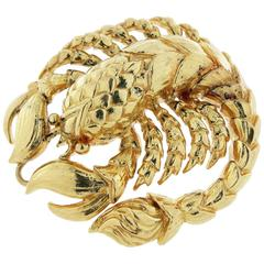 David Webb Yellow Gold Scorpio Brooch