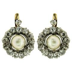 1890 Pearl Diamond Gold Cluster Earrings