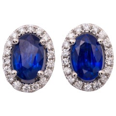 Oval Sapphire and Diamond Studs Halo Earrings