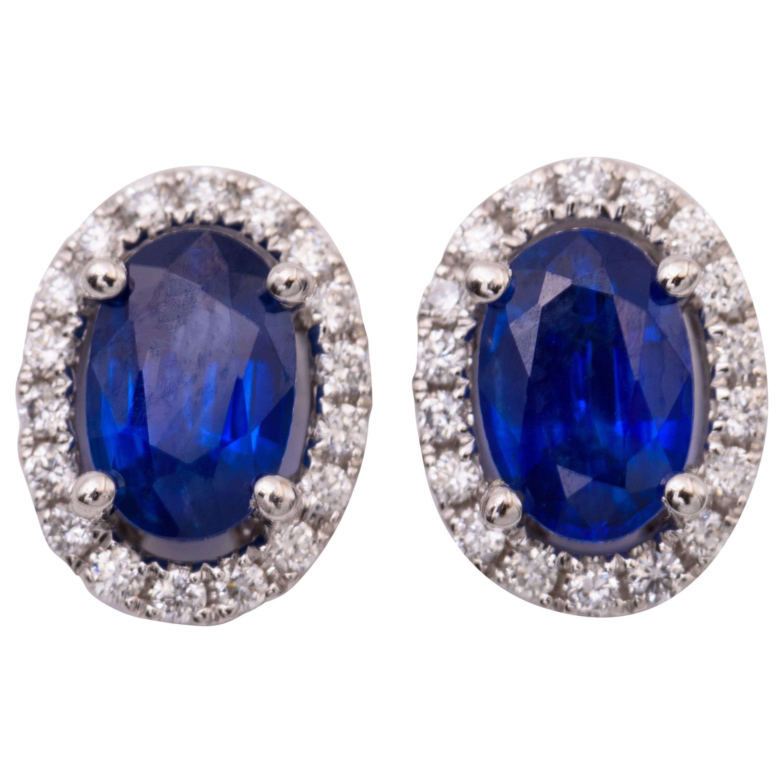 Oval Sapphire and Diamond Studs Halo Earrings