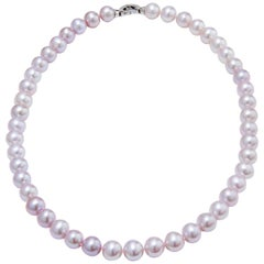 H & H Pink Fresh Water Pearl Necklace