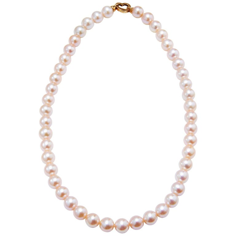H & H  Fresh Water Pearl Necklace