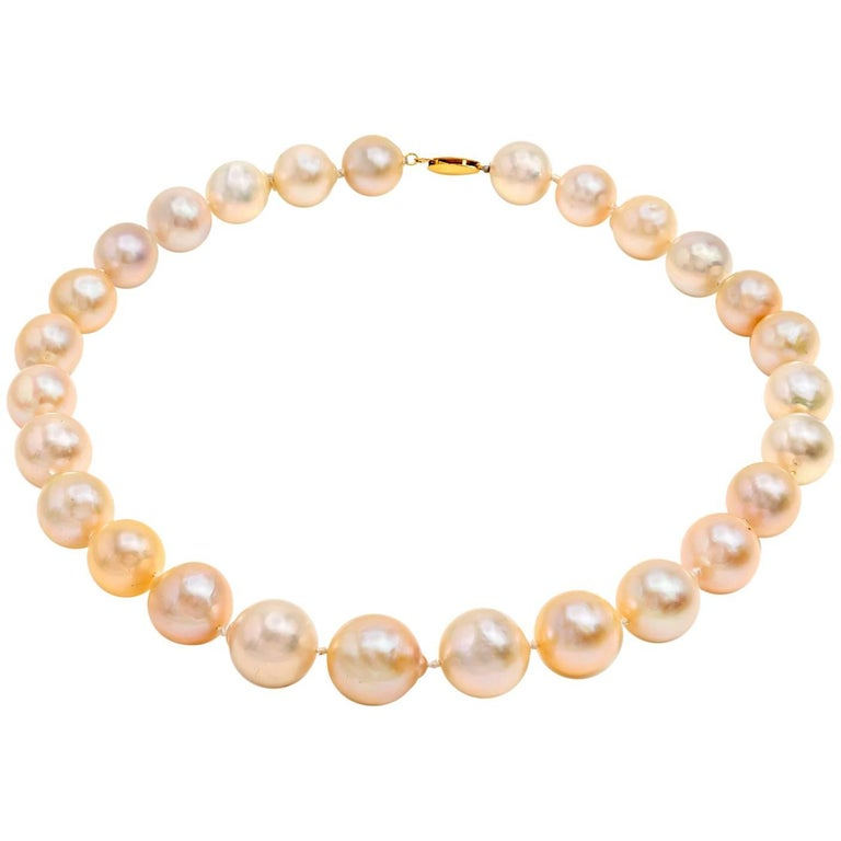 Large Fresh Water Pearl Necklace in Light Peachy Pink and Silver Hues Gold Clasp
