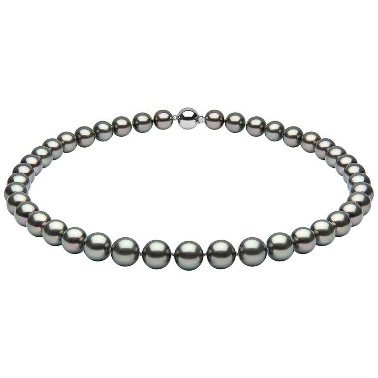 Yoko London 10mm Tahitian Pearl Classic Row Necklace on 18 Karat White Gold