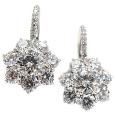 Flower Diamond Cluster Drop Earrings in Platinum