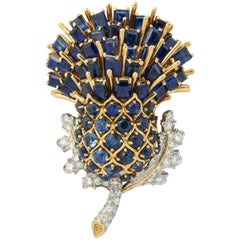 1950s Black Starr and Frost Sapphire Gold Thistle Brooch