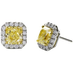 GIA Certified Fancy Yellow Diamond Gold Halo Stud Earrings