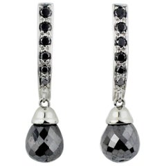 Julius Cohen Platinum and Black Diamond Earrings